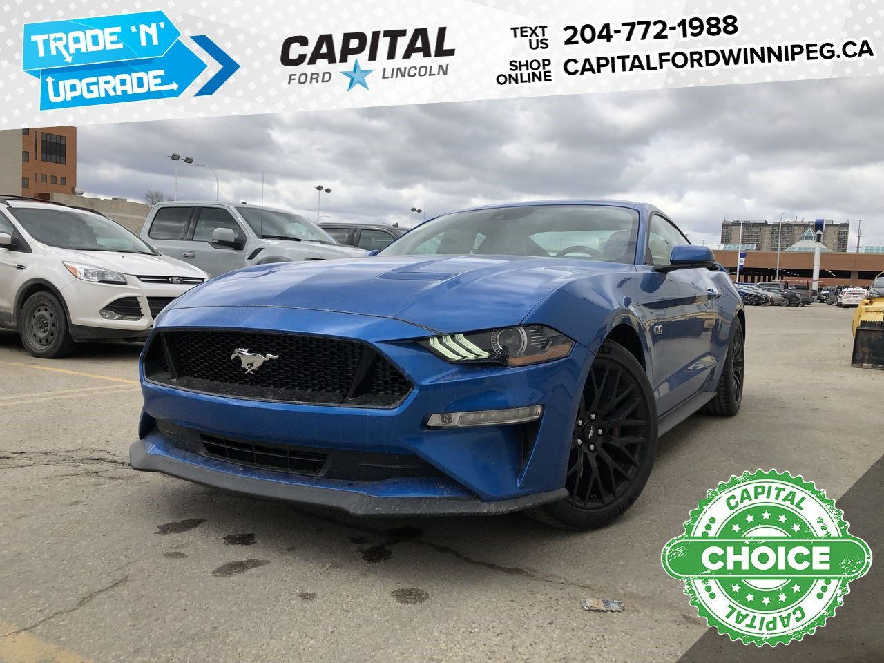 New 2019 Ford Mustang GT Premium*Performance Pack*Adaptive Cruise*Heated Seats