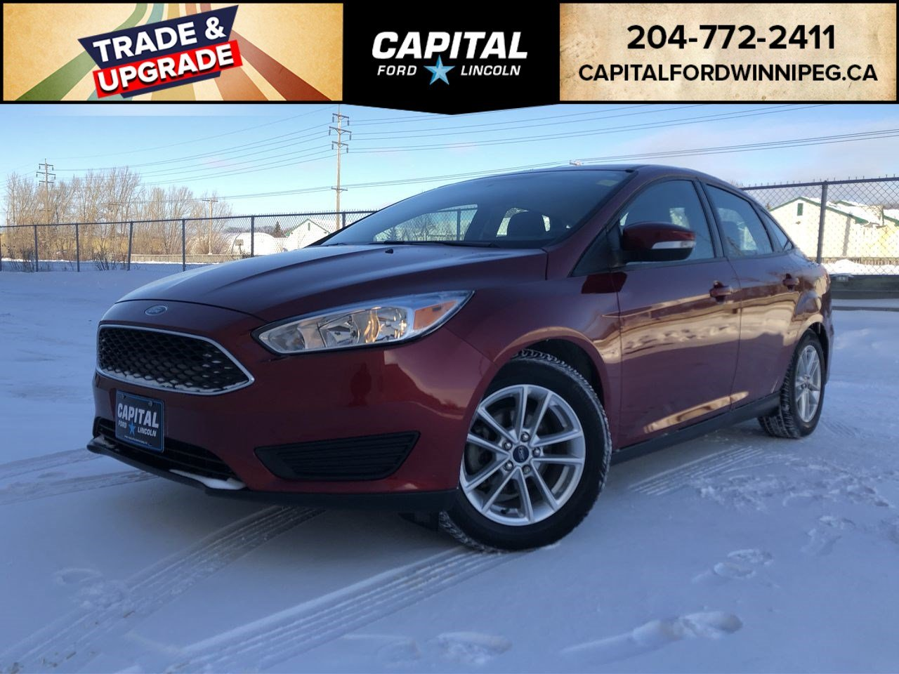 Pre-Owned 2015 Ford Focus SE LOCAL ONE OWNER TRADE HEATED STEERING