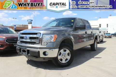 Pre-Owned 2014 Ford F-150 XLT SuperCrew IMMACULATE LOCAL TRADE